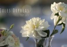 JULES ORPHEAS' BAPTISM