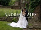 Andrea & Alex | Plaisterers' Hall
